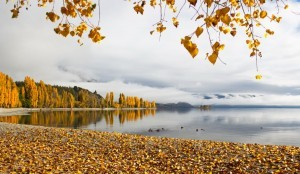 Autumn-on-the-lake-300x174